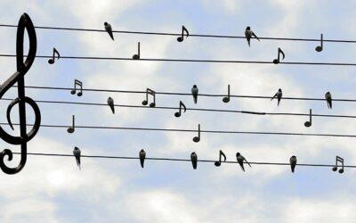 RSO:n syyskausi Musiikkitalossa on varmistettu turvavälein